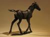 deborah-burt-foal