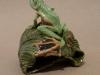 java-flying-frog-on-curled-leaf
