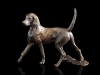 300-single-hound