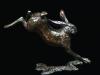 405-medium-hare-running