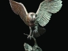 428-medium-barn-owl