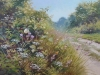overgrown-track