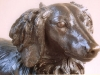 dachshund-detail