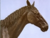 horse-head