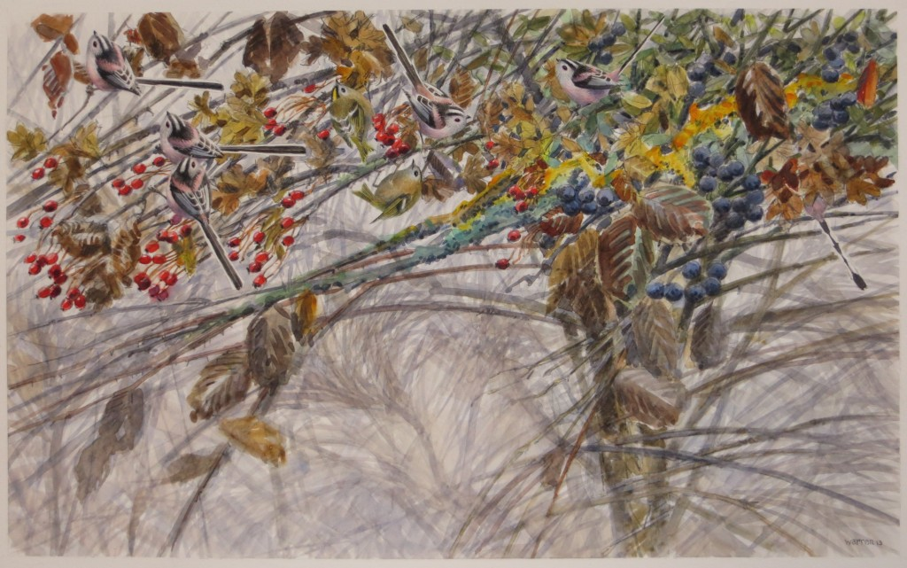 Long-tailed-Tits-Goldcrests-33x54cm-£875